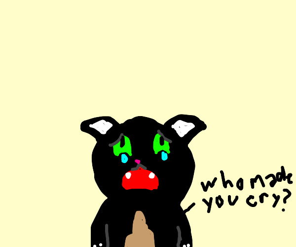 WHO MADE BABY FURRY CAT CRY?!?