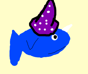 Magical Narwhal
