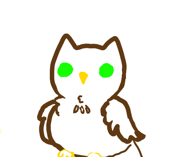 owl 0v0