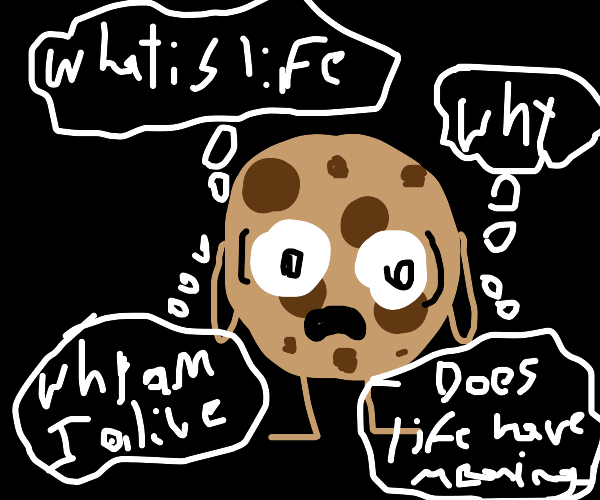 Chocolate chip cookie contemplates life