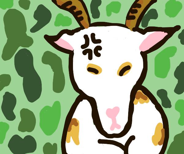 pessimistic goat