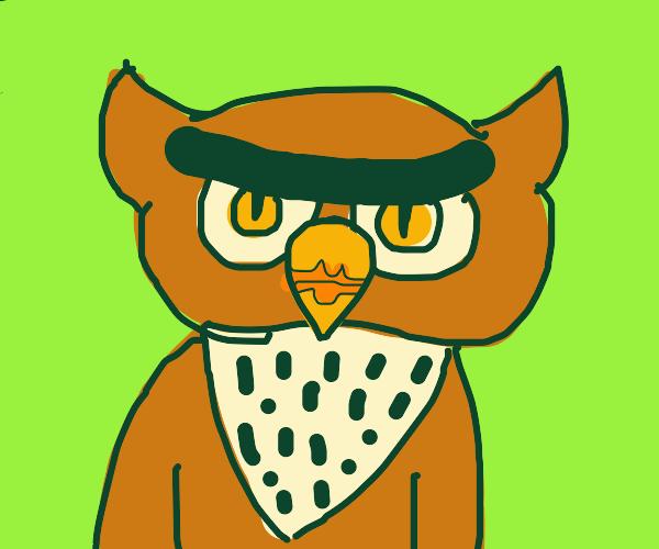 Grumpy owl with luscious lips