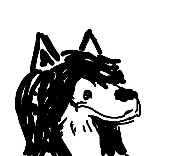 a anime wolf girl