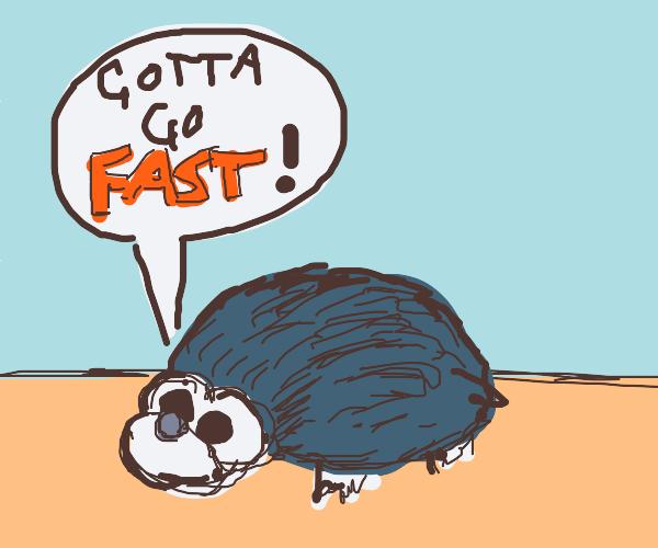 sonic but like a real hedgehog
