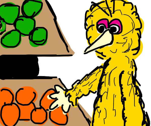 bird buys groceries