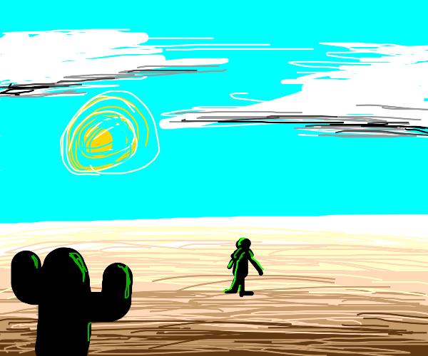 Kermit in the Desert