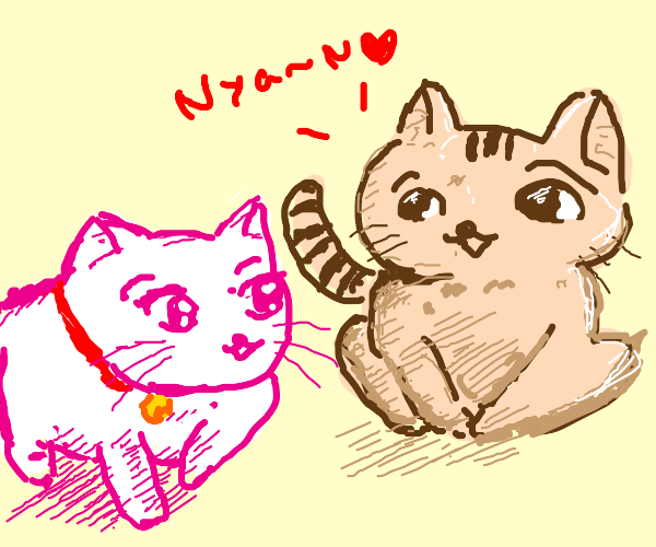 unrequited cat nuzzling