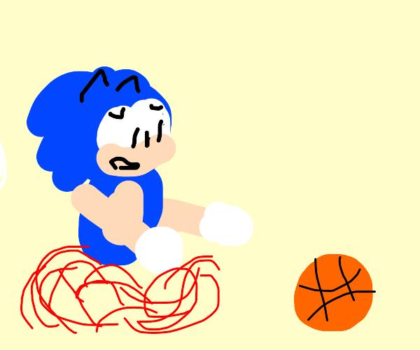 Hedgehog running after a ball