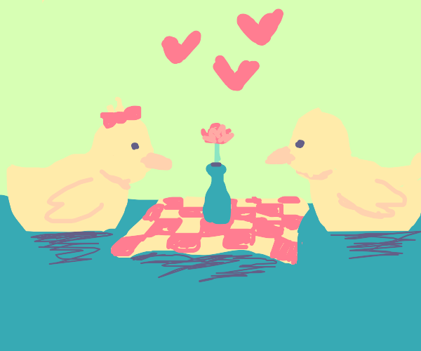 ducks have romantic picnic