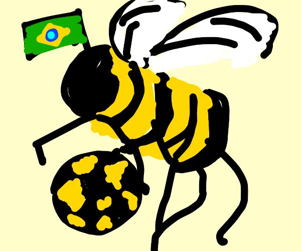 Soccer-playing Brazilian bee