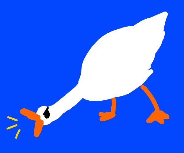 angry goose honks