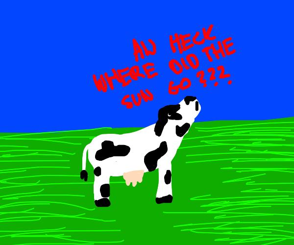 Cow in field worried by Sun's absence in sky