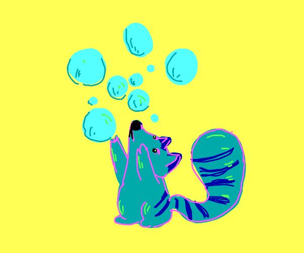 Little raccoon pops bubbles