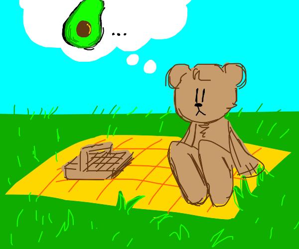 teddy bear on picnic thinking of avocado