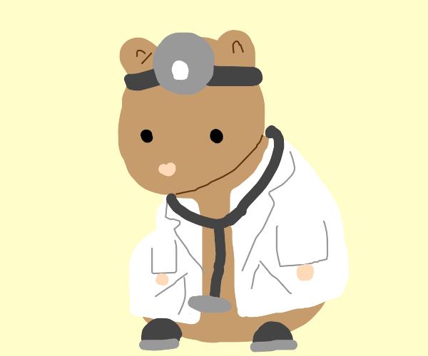 Dr. Hamster