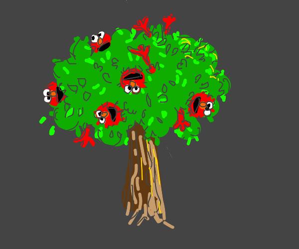 A tree of full of elmos