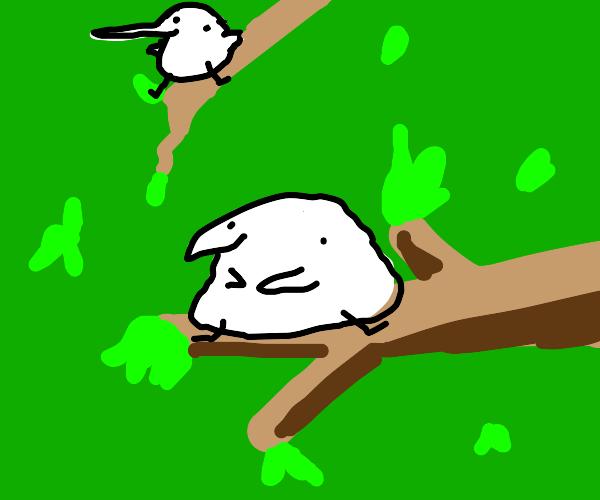 Berd in tree