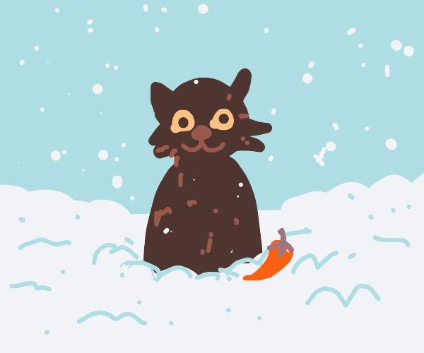 A cat in a hot shack among the snow