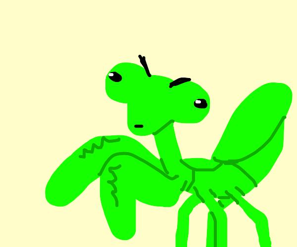 Unrealistic Praying Mantis