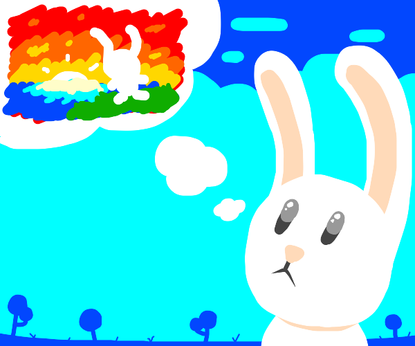 Rabbit thinks about life at sunset