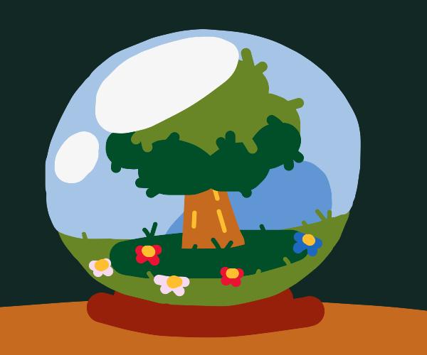 Tree in  magic orb