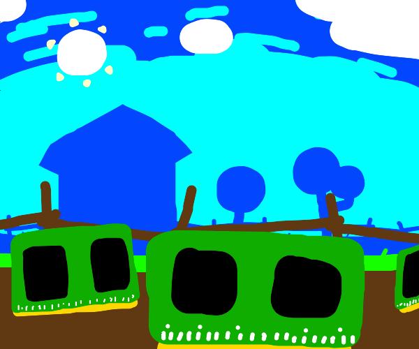 a farm full of rams. GET YO RAMS!