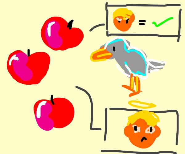 apples convincing a bird that trump is good.