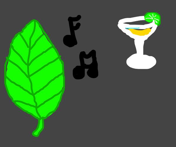 Leaf sings about margaritas