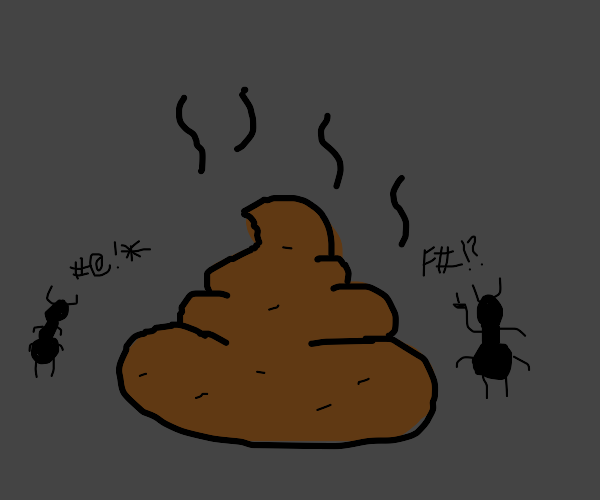 small bugs argue over poo