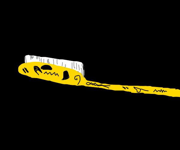 egyptian toothbrush