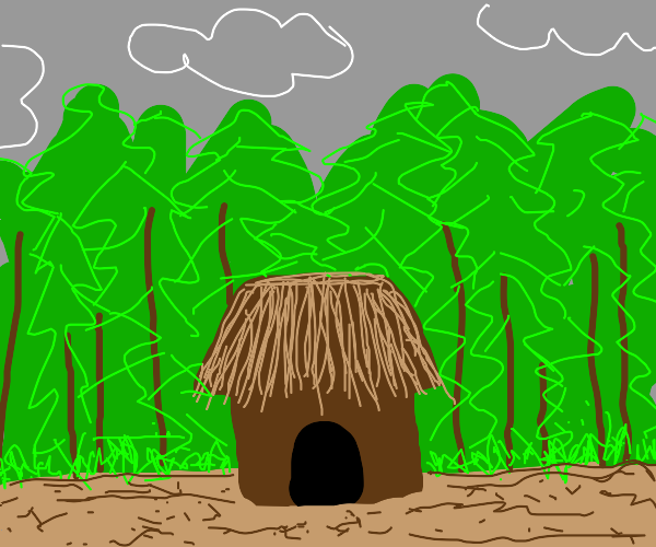 A random hut in the middlem of the wooods