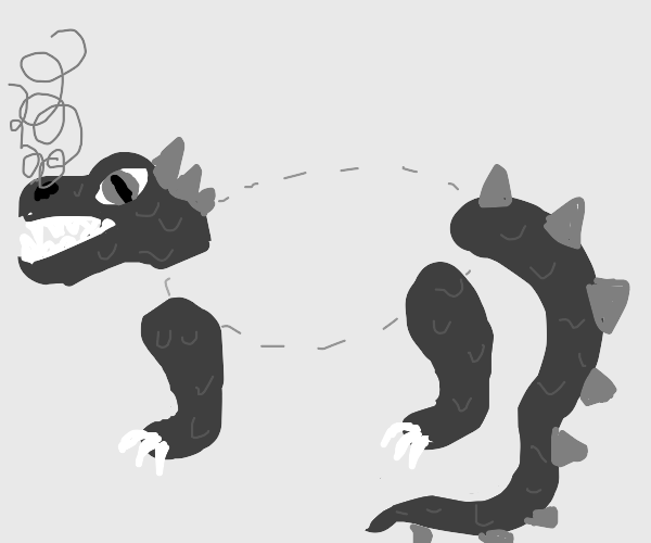 a dragon but its just the head legs and tail