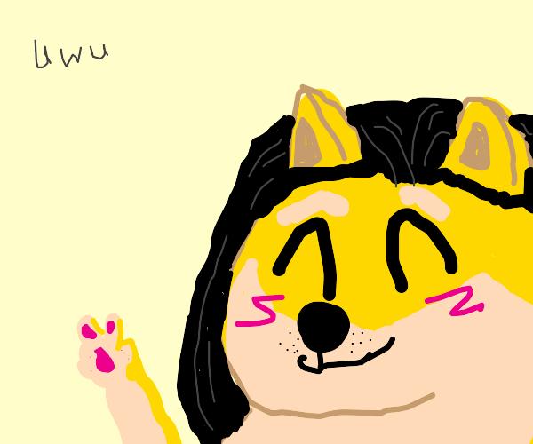 doge-chan