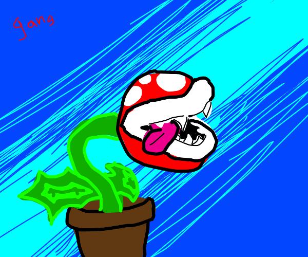 Piranha Plant gang