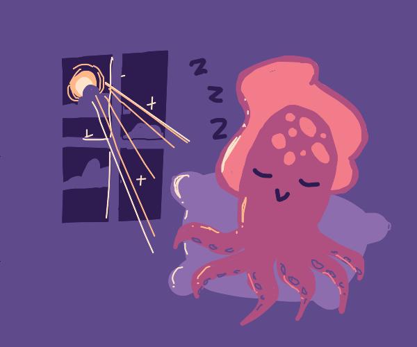 Squid is pleased to be sleeping