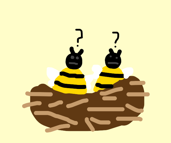 Confused bees at nest