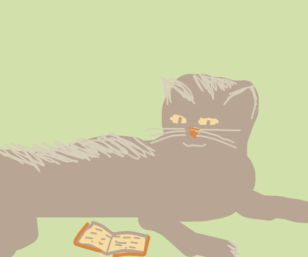 Black cat reading a book