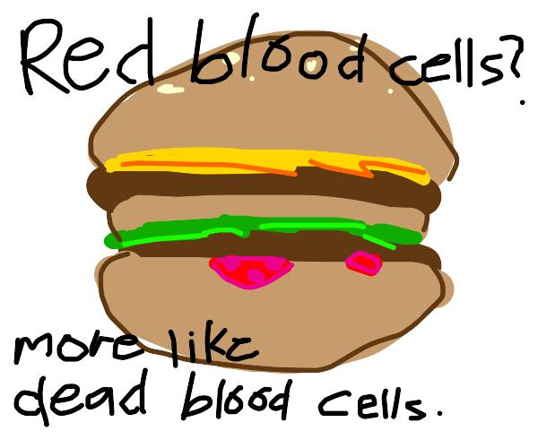 My blood cells after a Big Mac