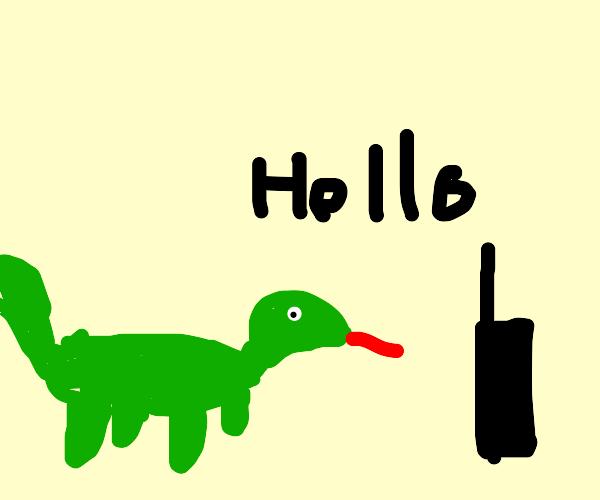 Quadruped says hello to walkie talkie