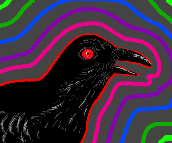 crow on drugs