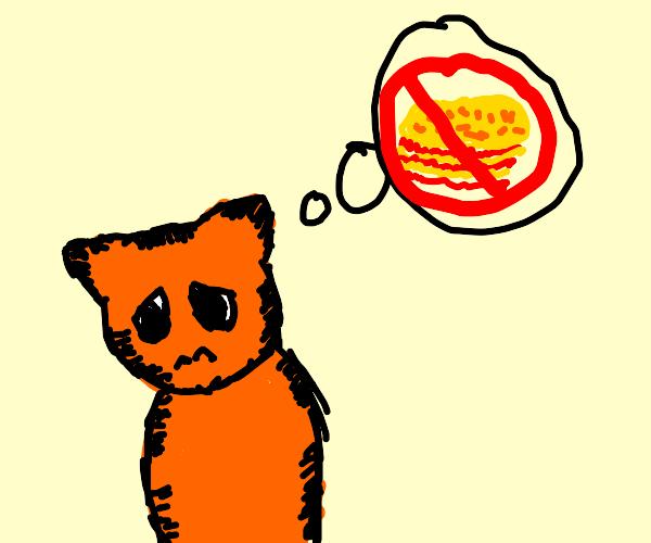 Garfield is sad because no lasagna
