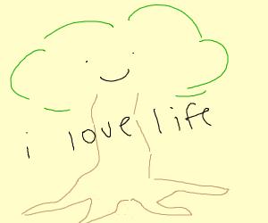 a tree enjoys life