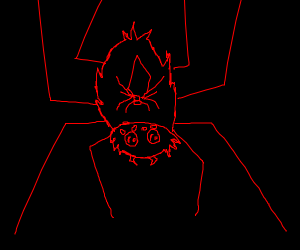 Spider in Spiderman's costume