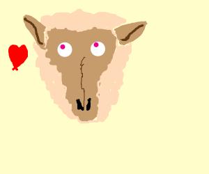 Fluffy Kawai lamb head (the Lamb ain't dead)