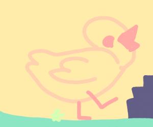 Monster Duck heading for city