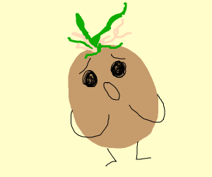 Shocked patato sprouting