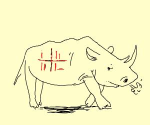 is rhino loss