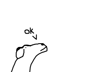 dog says ok
