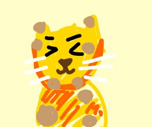 Pet Leopard