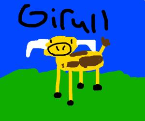 Giraffe+Bull